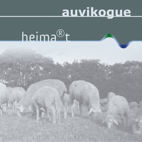 Auvikogue-heimart-cover in heima®t bei green field recordings